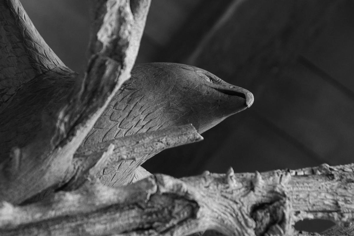 Sculpture en bois, aigle vue de dessous
