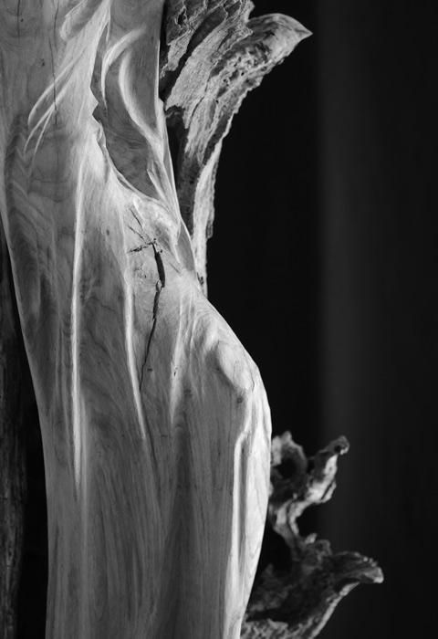 Sculpture sur bois drapé lisse